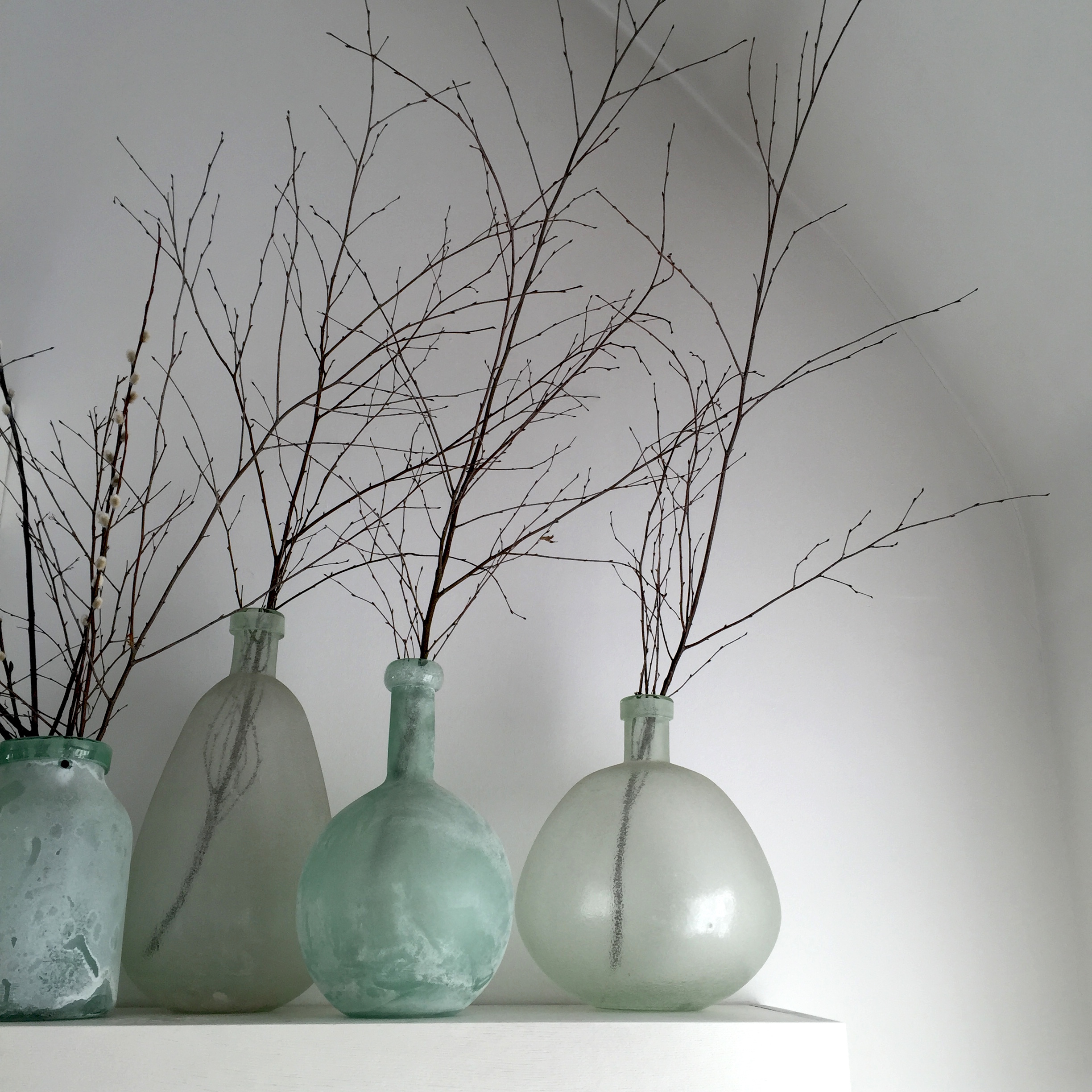Bold Vases and Branches