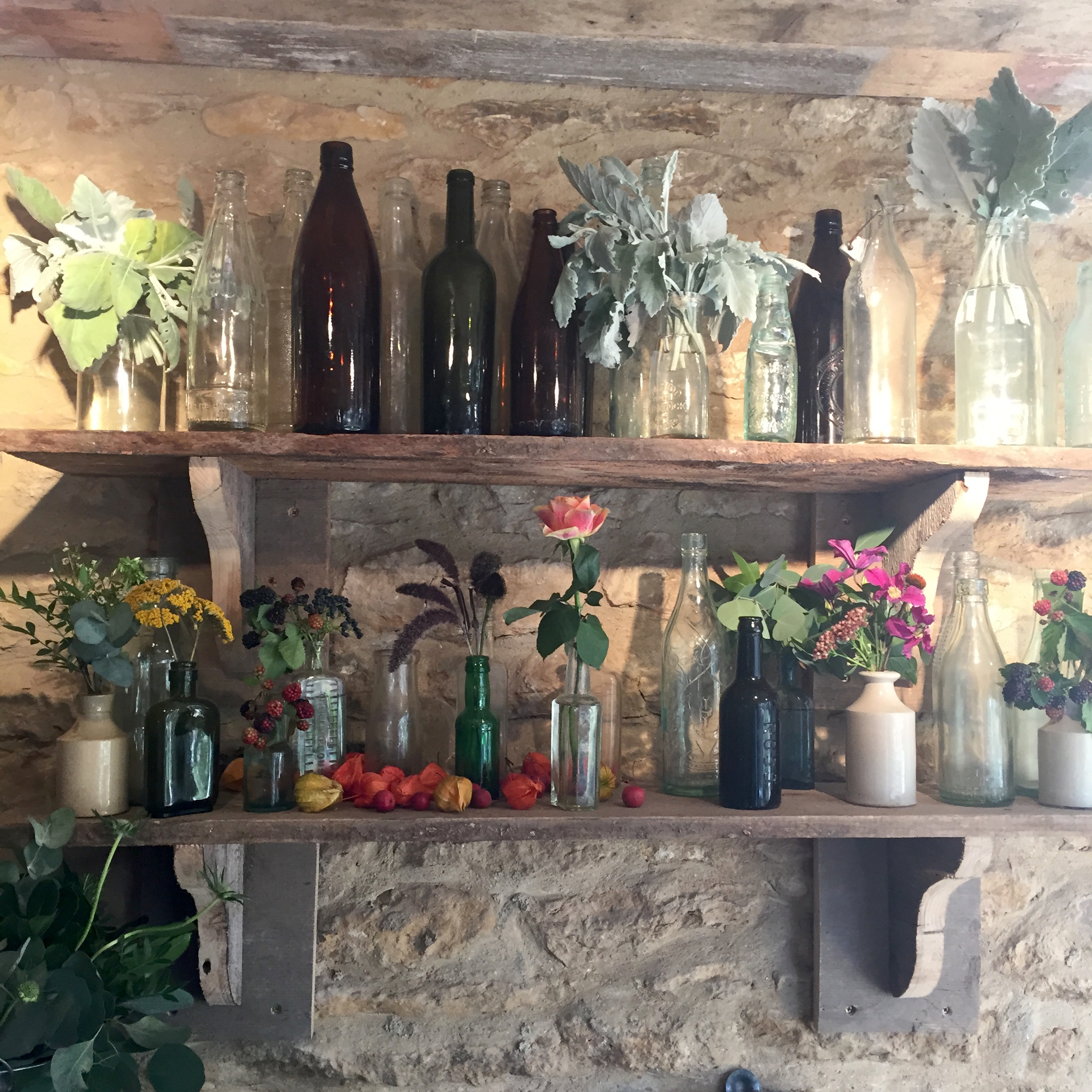 Vintage Bottles and Stems